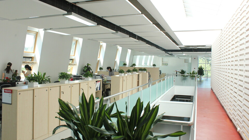 CN Velux Office, Rockfon Eclipse, 2013